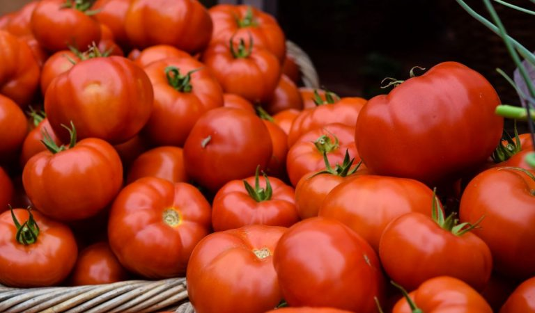 Why Tomato is Both Fruit and Vegetable